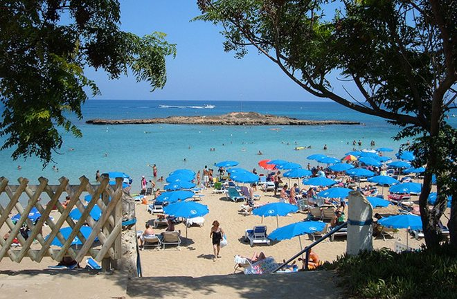 plaze eu fig tree bay