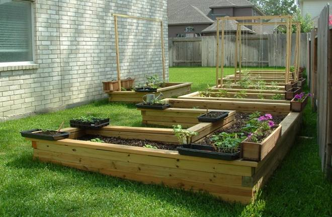 Vlastiti organski vrt