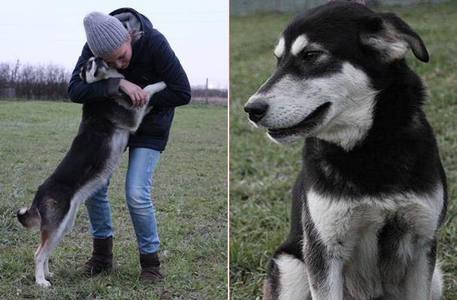 (S)pas za vas: Predstavljamo vam Dewu