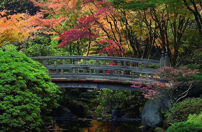 Čarobni japanski vrtovi - She