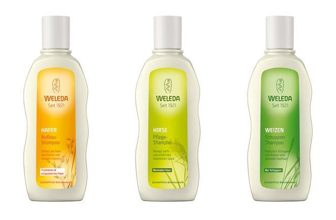 shampoo tekst