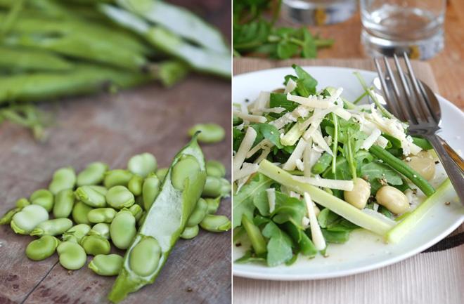 Salata od mladog boba i parmezana