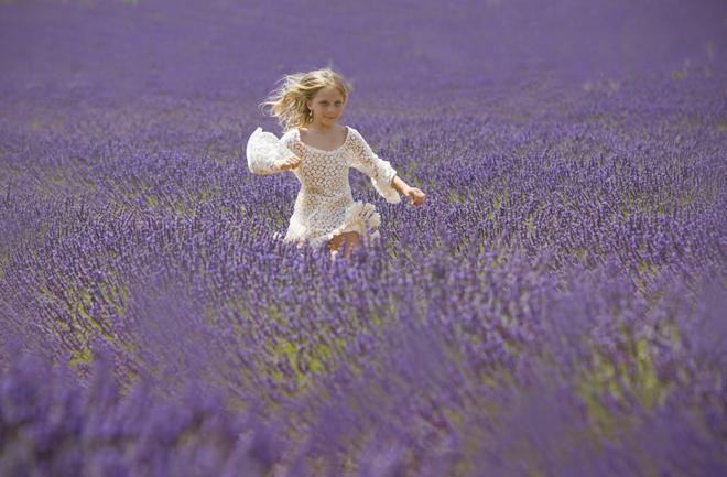 Zavodljivi mirisi francuske pokrajine Provanse