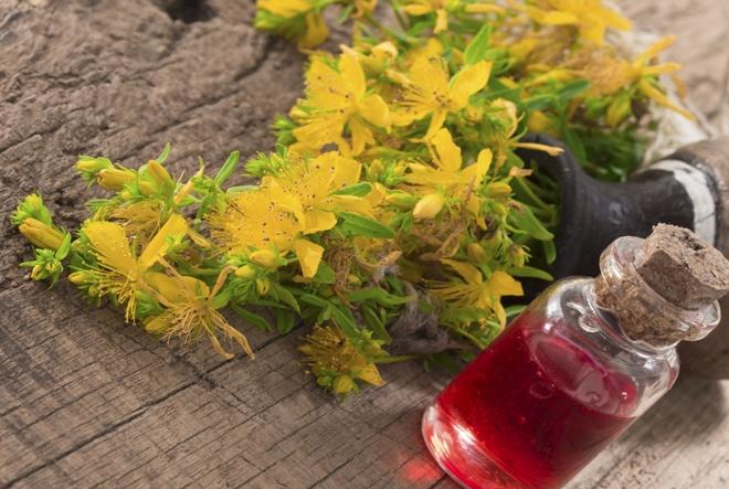 Svemoguće kantarionovo ulje