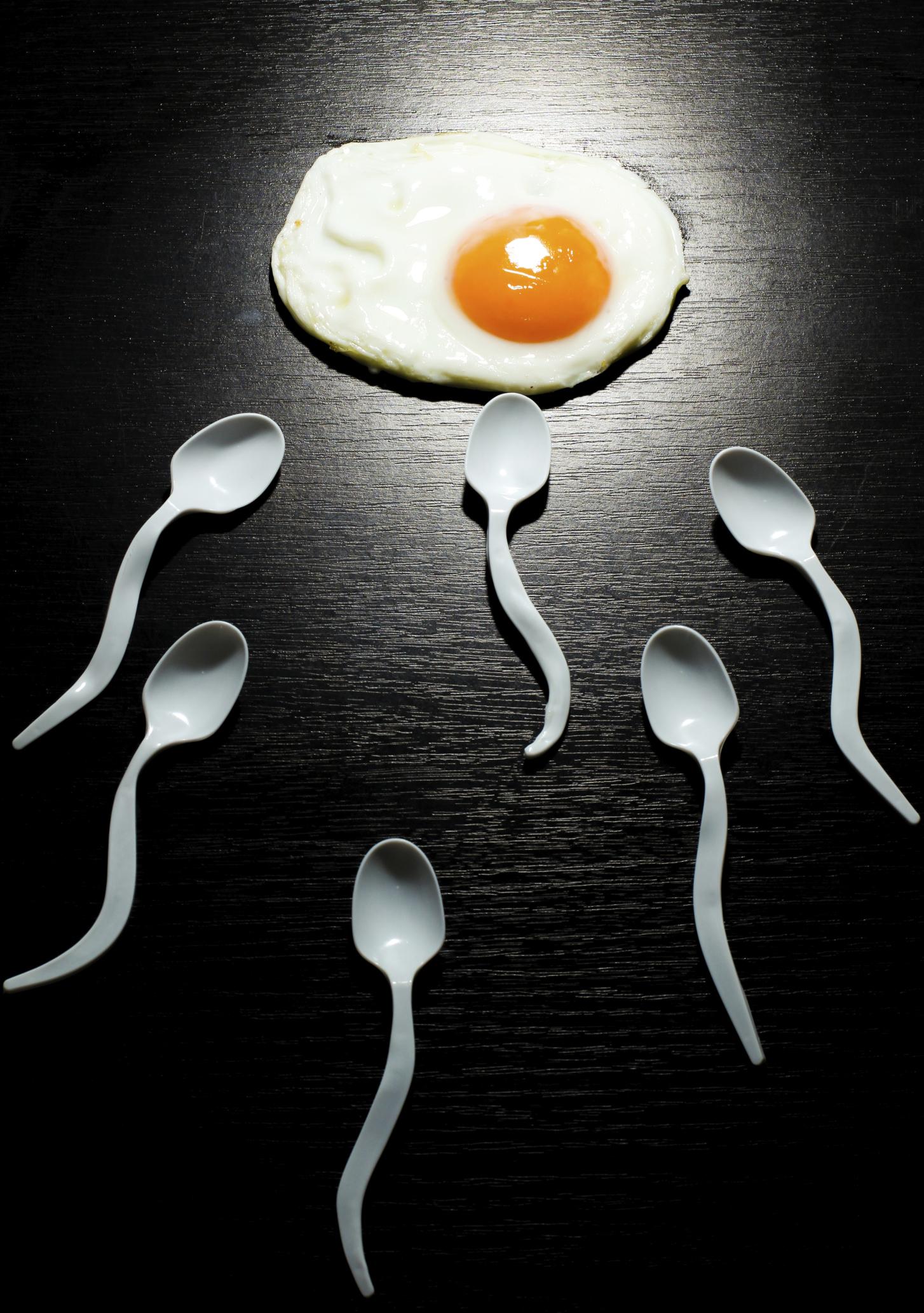 što je ovulacija