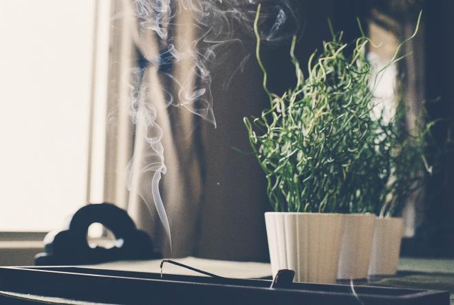 Miris proljeća u vašem domu – probudite svoja osjetila!