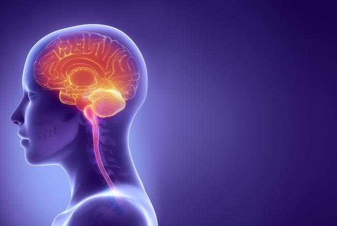 Zašto su omega-3 masne kiseline važne za mozak?