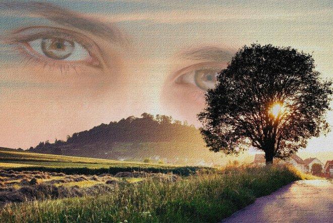 Biti vizionar ili kako ostvariti snove?
