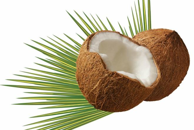 Šećer kokosovog cvijeta za bezbrižno zaslađivanje
