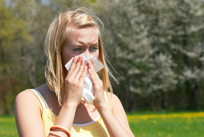 Alergičari, pridržavajte se ovih savjeta, ambrozija je u punom cvatu