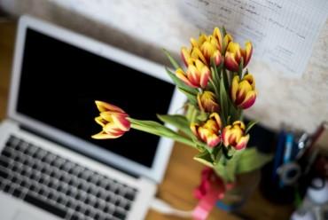 Moć cvijeća