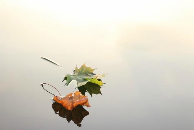 Feng Shui savjeti za jesen