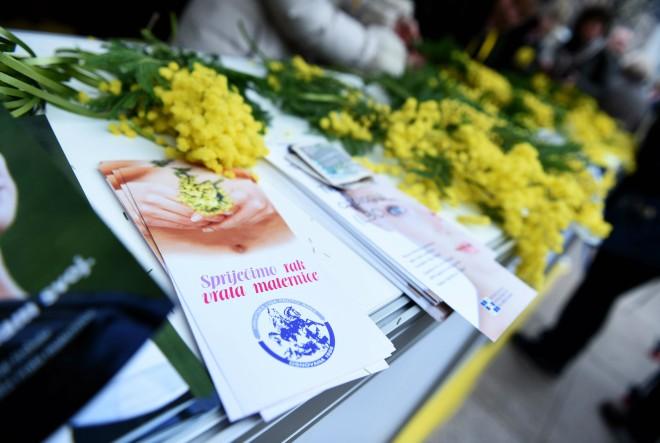 U Hrvatskoj svaki treći dan jedna žena umre od raka vrata maternice