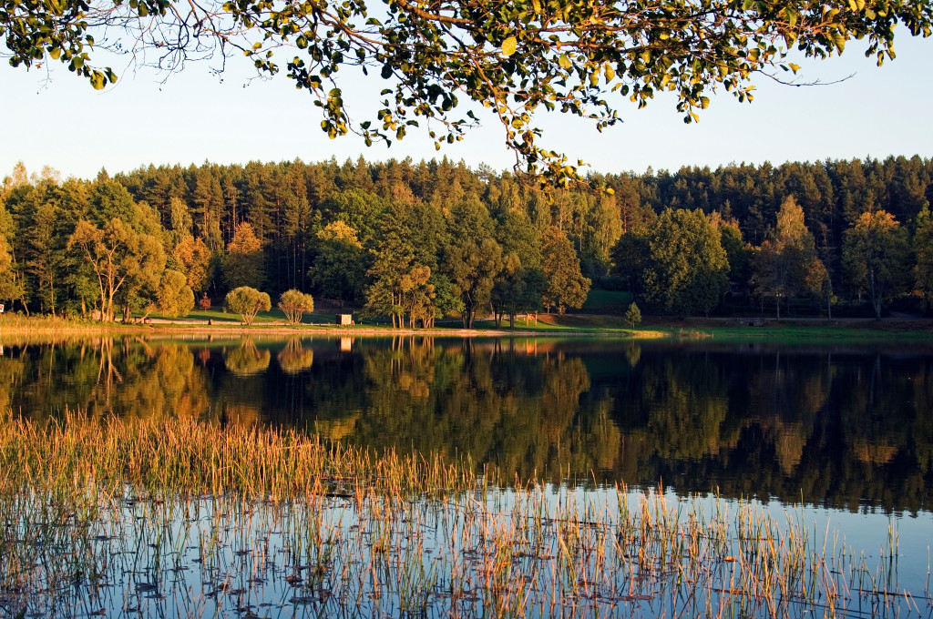 ANY4XM Lithuania, Aukstaitija National Park, Land of Lakes and Hills. A lakeside reflection of autumnal trees.