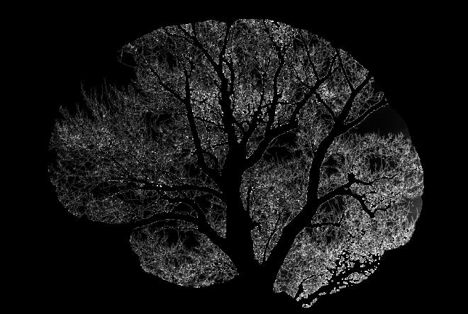 Blagi kognitivni poremećaj