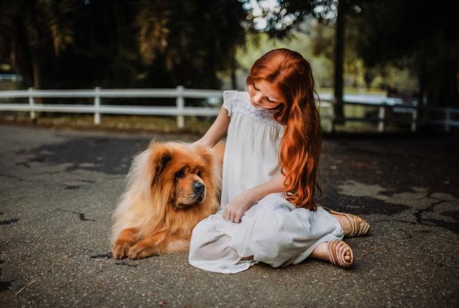 Kako da dijete i pas postanu najbolji prijatelji?