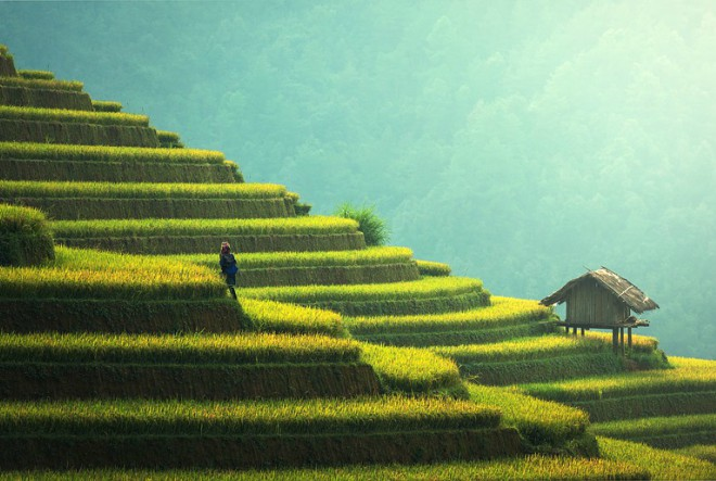 Drevna i carska Kina