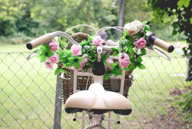 Ususret 53. Floraartu: Rosa rosae – priča o ruži