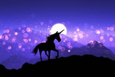 Drama Queen: Jesam, frustrirana sam kobila!
