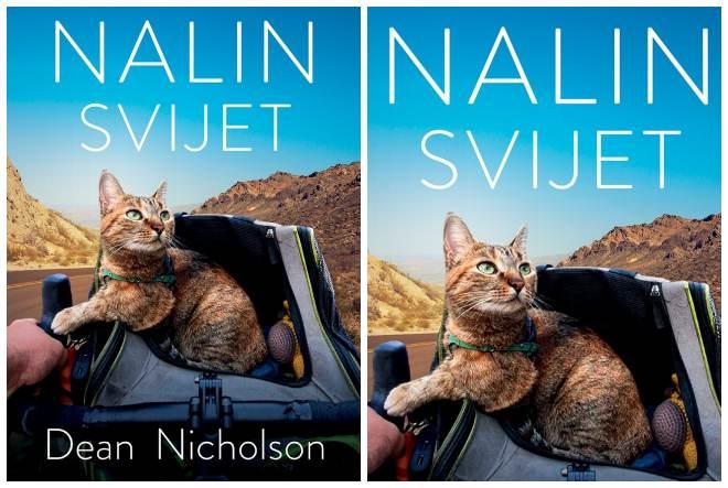 Nalin svijet – neobično prijateljstvo napuštene mačke i biciklista koji je krenuo na put oko svijeta