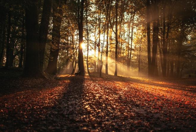 Jesen kao period pozitivnih promjena