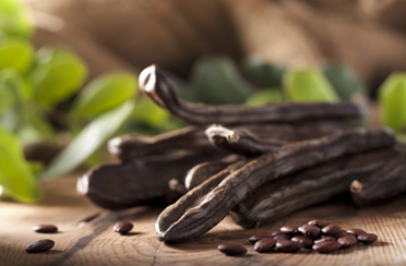 Rogač – zamjena za čokoladu!