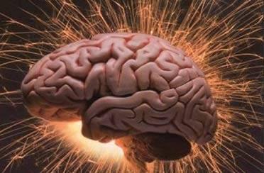 Muški mozak