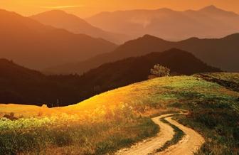 Put kojim rjeđe se ide