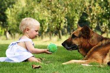 Učimo od kućnih ljubimaca
