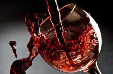 vino_lead