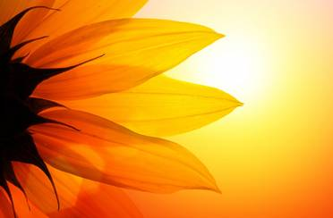 Blagodati Sunca