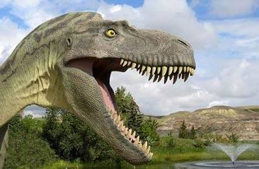Sve o zemlji i dinosaurima
